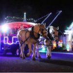Emerald Forest Carriage Ride in Odessa, December 13-14th